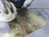 25-tarleten-wiping-plate-web