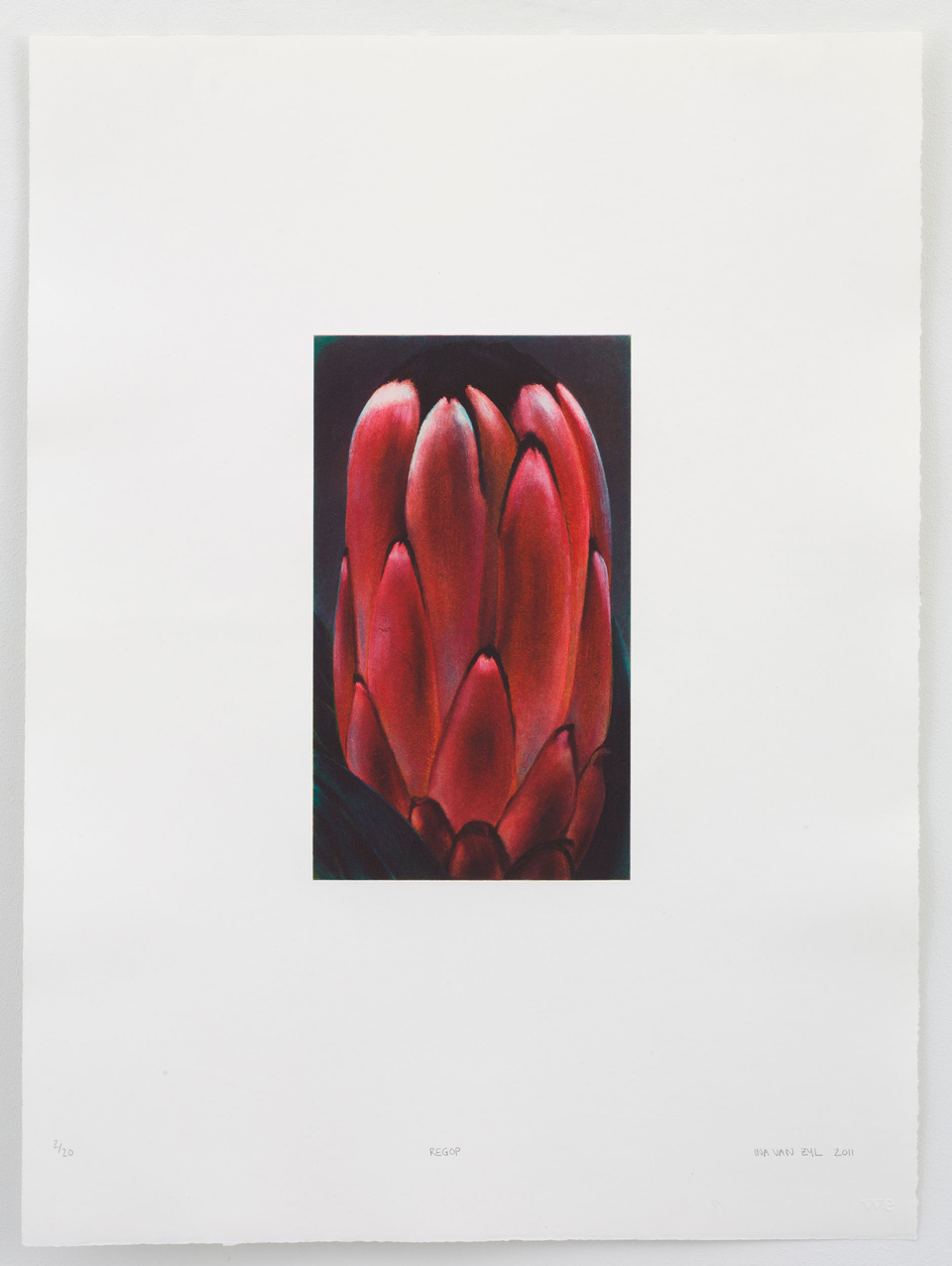 Ina van Zyl, Regop, Prints