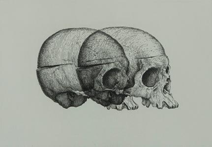 GM_Binocular-Skull-2-image-16sfweb