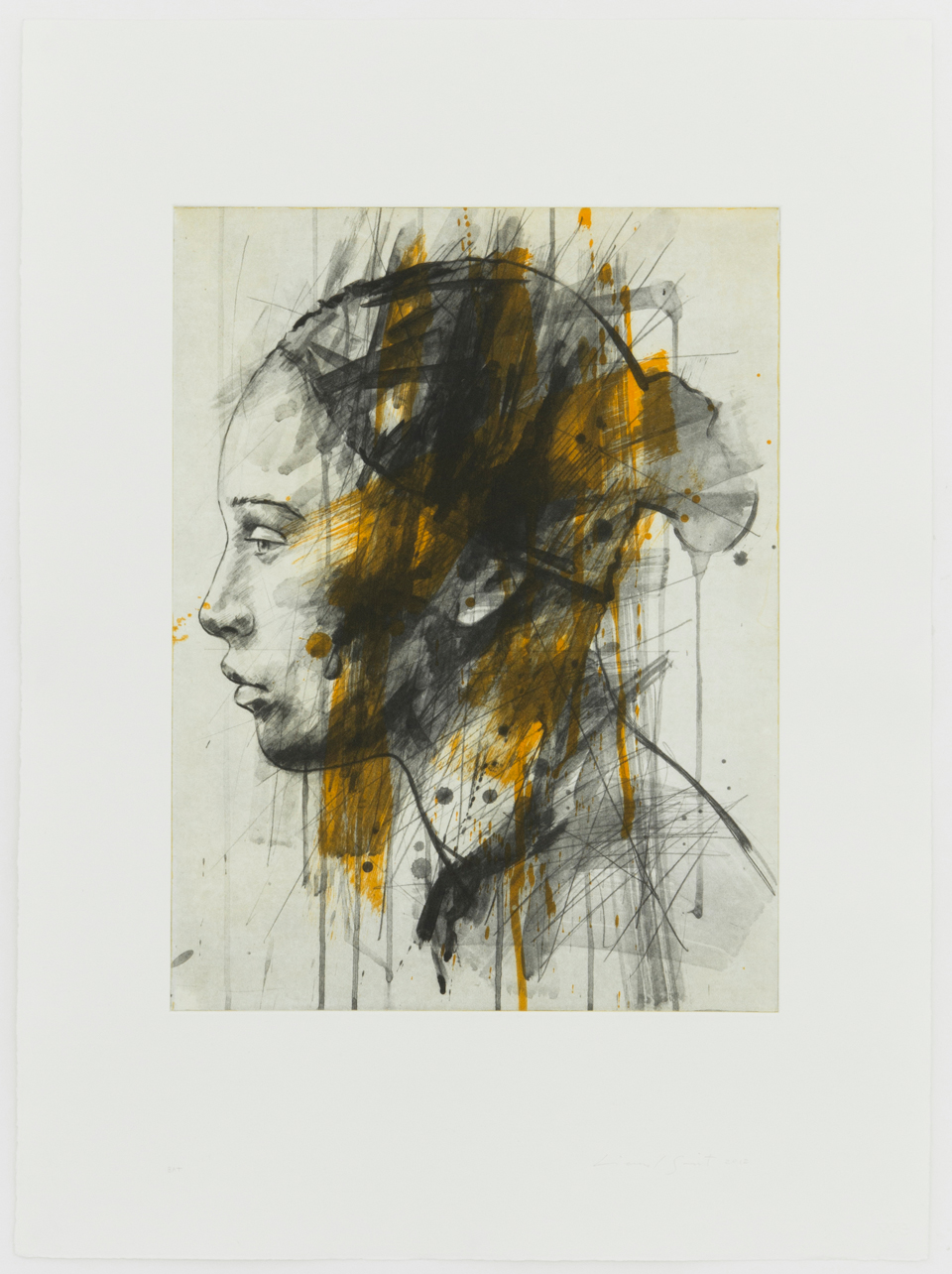 lionel-smit, prints, warren-editions,
