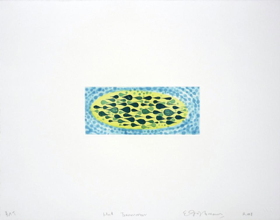 Ruan Hoffmann, Het Tranenmeer, Prints