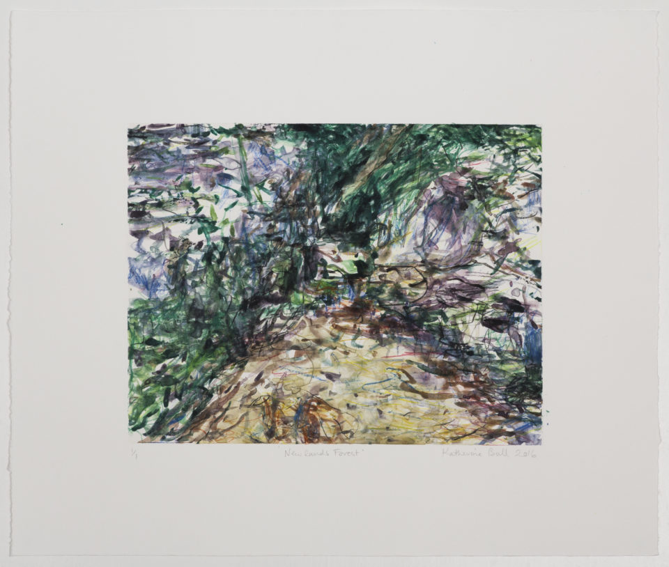 Katherine Bull, Newlands Forest, Monotypes, Prints